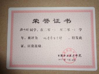 """手抄报三等奖(见附页照片) 2012-2013参加两次""""走进夕阳红""""敬老院活动"""